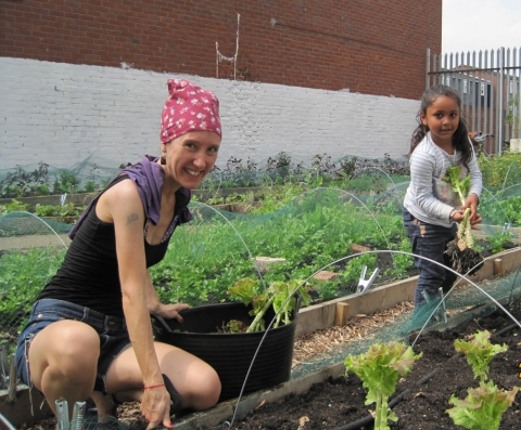 volunteers growing food growing communities