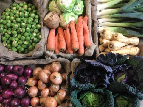 Sarah green's winter veg
