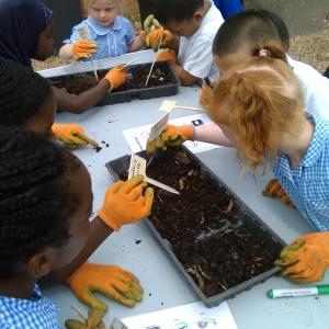 kids sowing seeds at Dagenham Farm