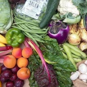 organic box scheme fruit and veg