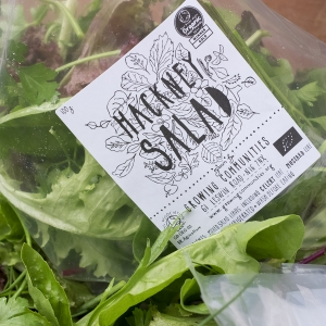Hackney salad bag photograph by Walter Lewis