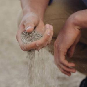 hand holding soil