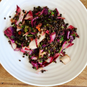 lentil endive red cabbage salad