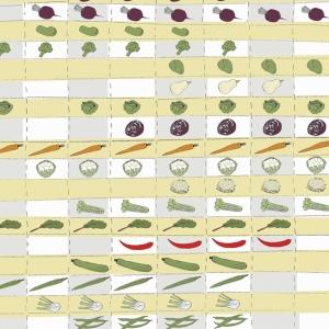 organic veg from seasonal GC scheme by Lucie Galand
