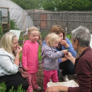 Clissold park growing food with toddlers