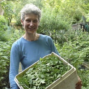 Sophie head grower