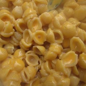 pasta with creamy squash sauce