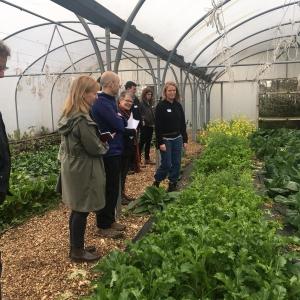 Defra delegates visit the Dagenham Farm