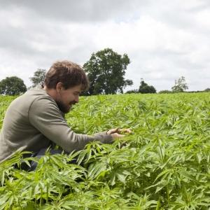 Hempen organic hemp farm