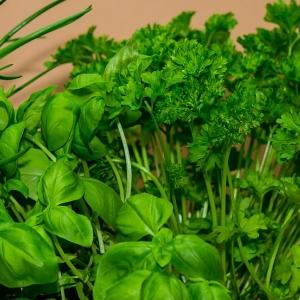 mixed herbs basil parsley